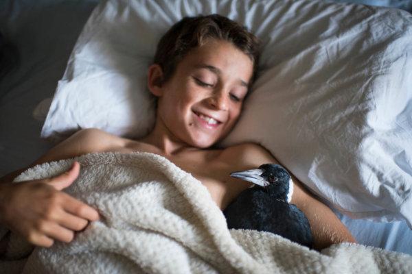 Noah Bloom and Penguin Bloom