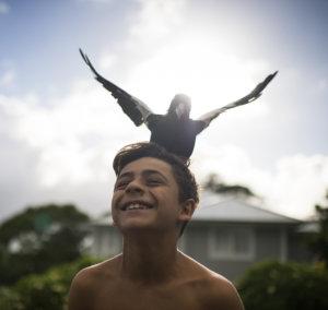 Reuben with Penguin taking flight
